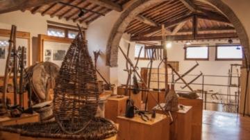 Estate, Museo del Bosco, Sovicille