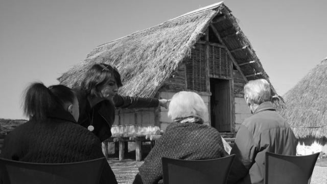 Musei e Alzheimer - Emozioni al Museo - Foto delle attività